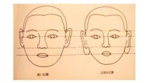耳の下部と口が揃うイラスト