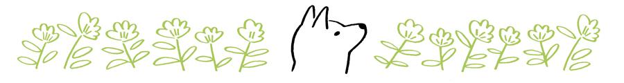 柴犬うみと花のイラスト